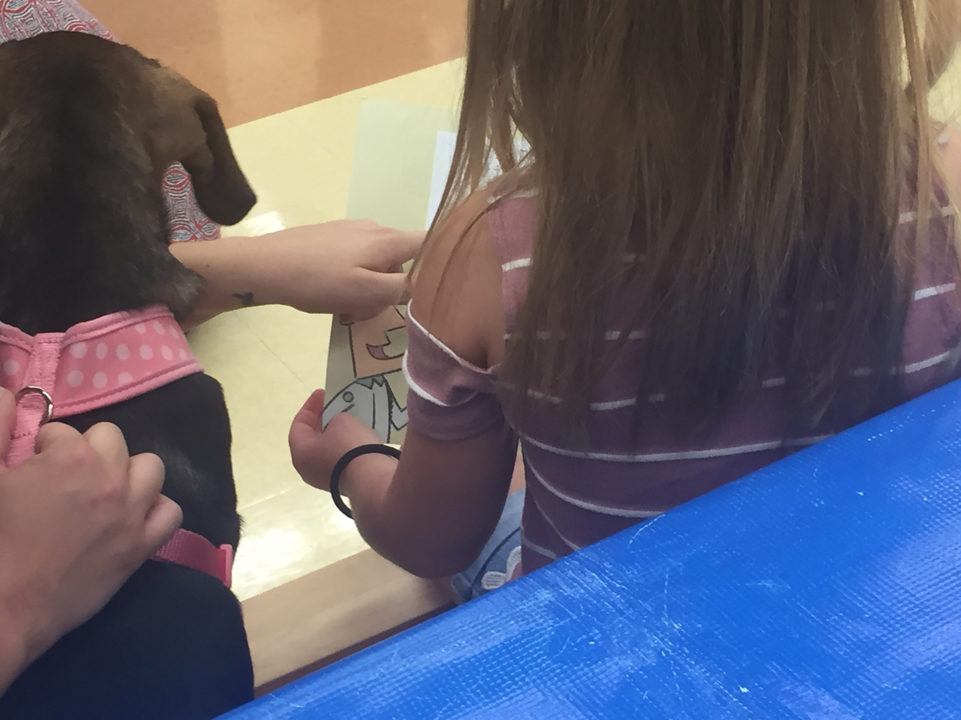 Reading To Dogs At Petco Palm Beach Gardens WPTV 5 News