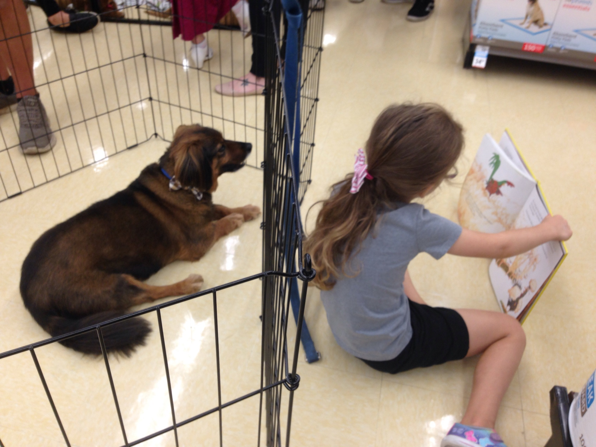 Reading to Dogs at Big Dog Ranch Rescue in West Palm Beach