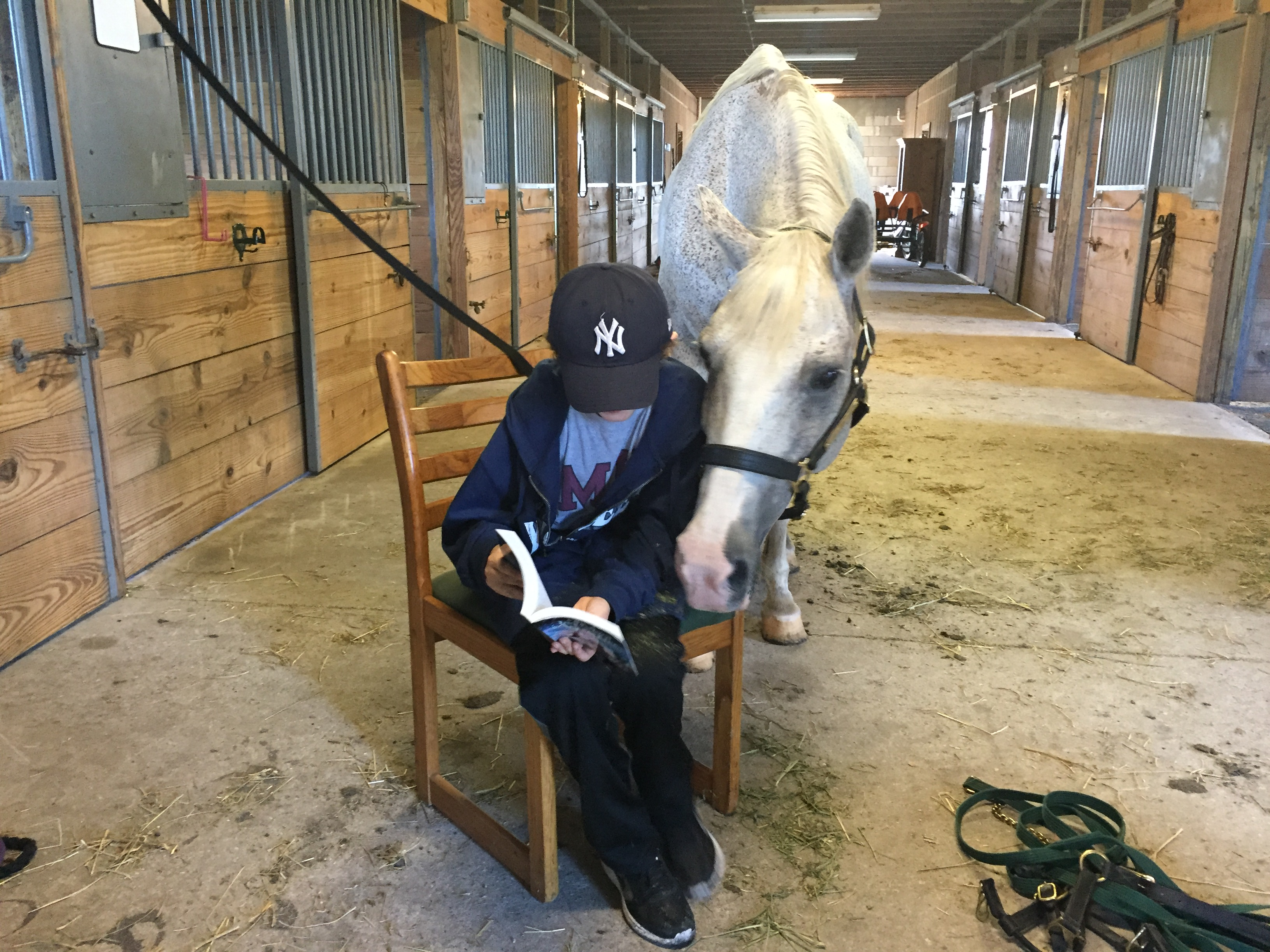 Shane Herman Reading To Horse West Palm Beach